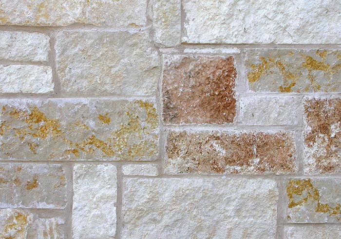 Gold Limestone - Saw Cut